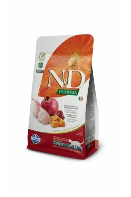 N and D Cat Pumpkin Quail